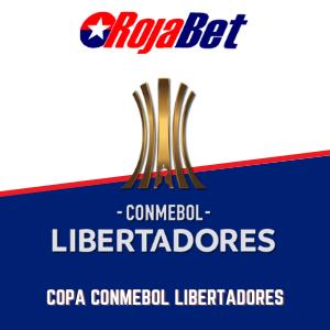 Apuesta en la Copa Libertadores con Rojabet